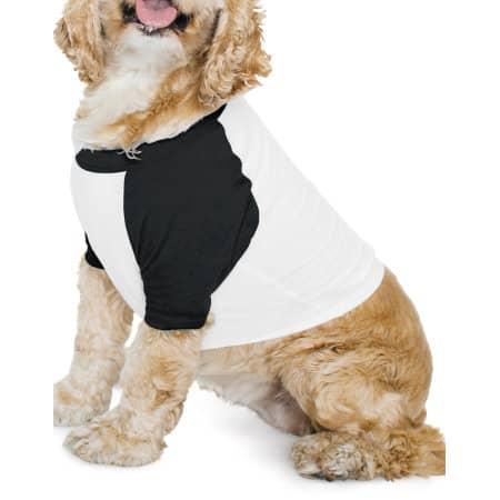 Dog Poly-Cotton 3/4 Sleeve Raglan T-Shirt von American Apparel (Artnum: AM953
