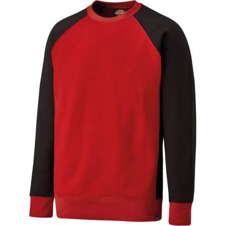 Two Tone Sweatshirt von Dickies (Artnum: DK3008