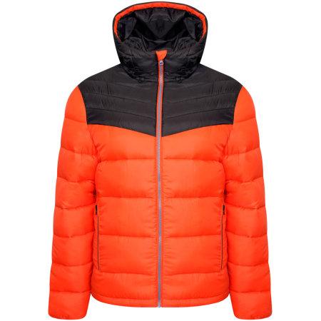 Hot Shot Hooded Baffle Jacket von Dare 2B (Artnum: DPN001