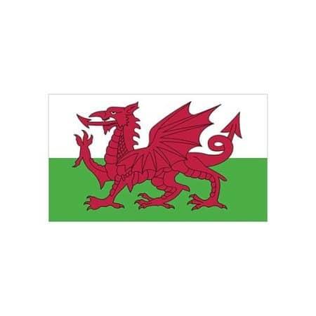 Fahne Wales von Fahnen (Artnum: FLAGWLS