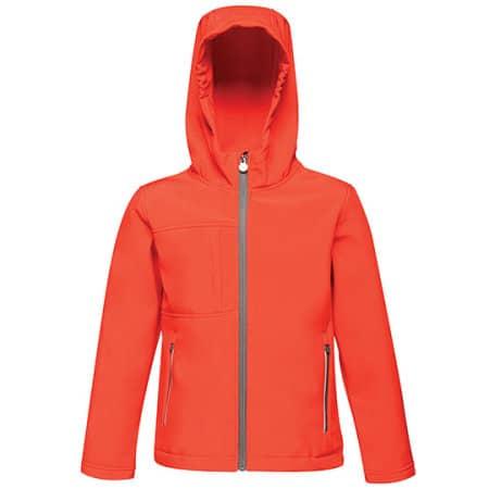 Kids Octagon 3-layer Hooded Softshell Jacket von Regatta (Artnum: RG622