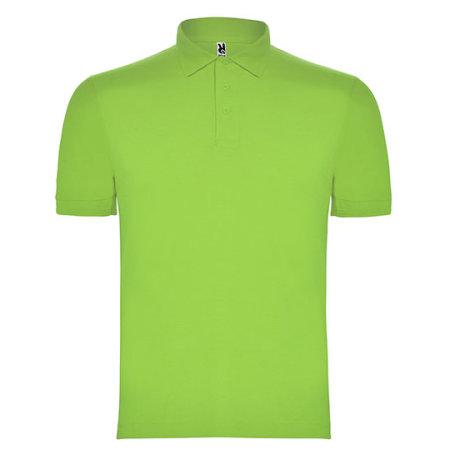 Pegaso Poloshirt in Mantis Green von Roly (Artnum: RY6603
