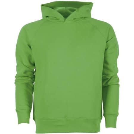Stanley Knows Kapuzensweat in Green von Stanley/Stella (Artnum: STSM607
