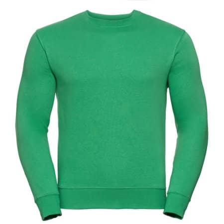 Authentic Sweatshirt in Apple von Russell (Artnum: Z262N