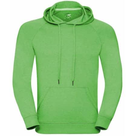 Men`s HD Hooded Sweat in Green Marl von Russell (Artnum: Z281M